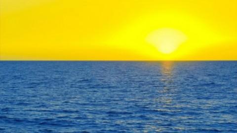 W Rosji zakazano kolory żółty i niebieski