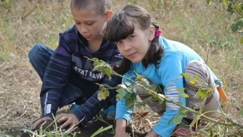 260 internally displaced people with special needs from Donbas stay in Odesa
