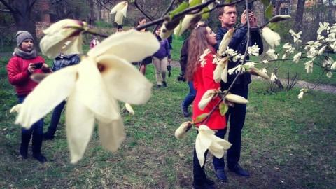 Весенняя симфония во Львове