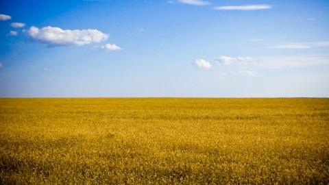 W Sloviansku, Kramatorsku i Artemivsku pojawiła się telewizja ukraińska