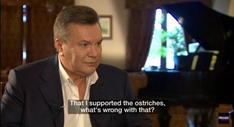 «Я поддерживаю страусов». Новое стендап шоу Януковича (Видео)