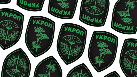 "Statement from ""Ukrainian patriots association UKROP"" regarding the situation in Mukacheve"