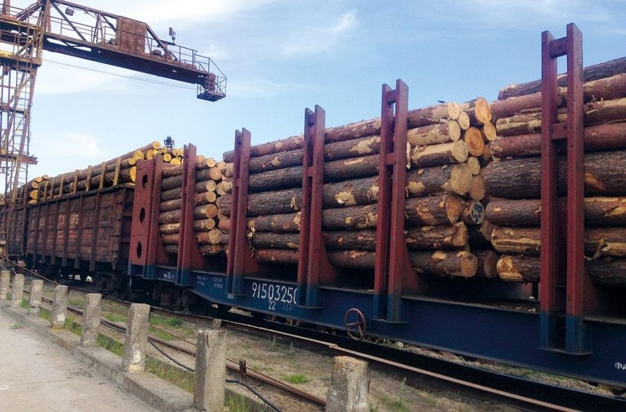 ukraine business wood export
