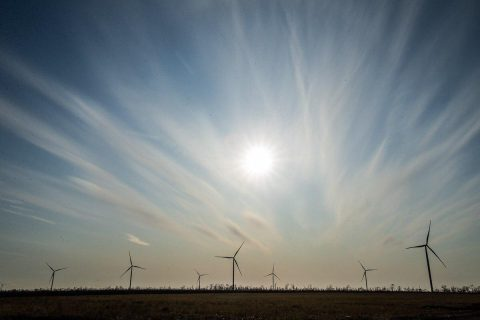 One of the biggest in Ukraine: a wind electric power plant launched in Zaporizhzhia region