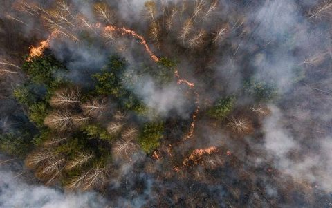 Firefighters continue to extinguish forest fire in the radioactive Chornobyl zone